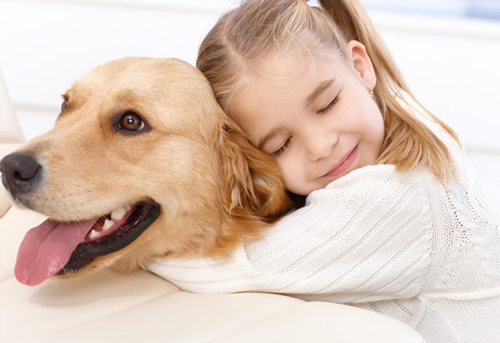Sokak Hayvanlarına Yardım Etmenin 4 Kolay Yolu